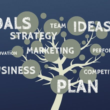 Grow A Business, Manage Everything Conveniently